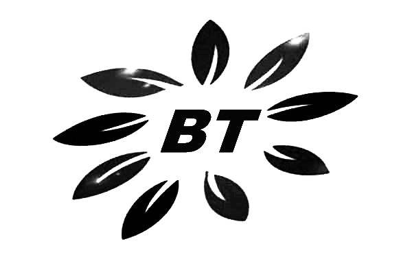 碱性反渗透膜清洗剂BT0666一种基于阴离子表面活性剂的配方